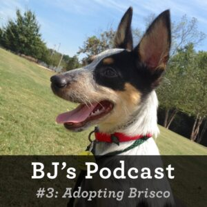BJ Nemeth adopts Brisco podcast