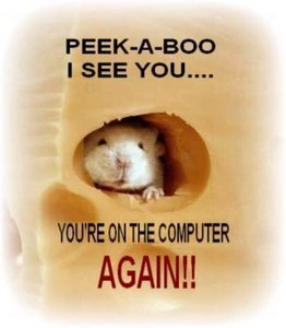 computer peek-a-boo