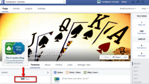300 Facebook followers