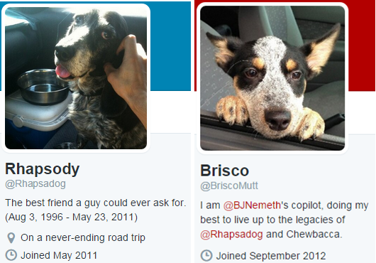 Dogs with Twitter