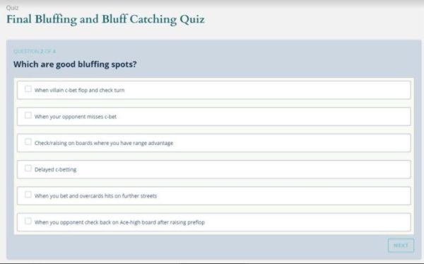 Bluff catching quiz