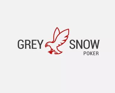 Grey Snow Poker logo
